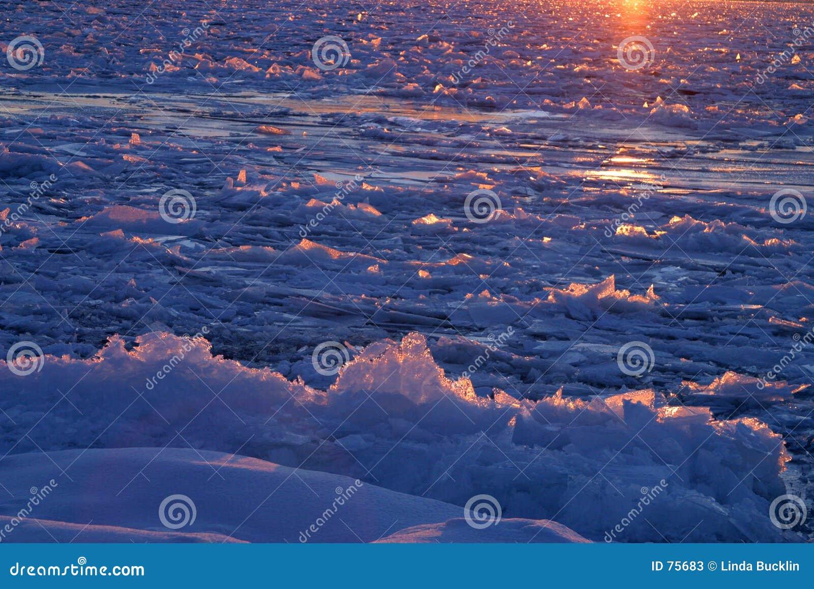 Mar del hielo