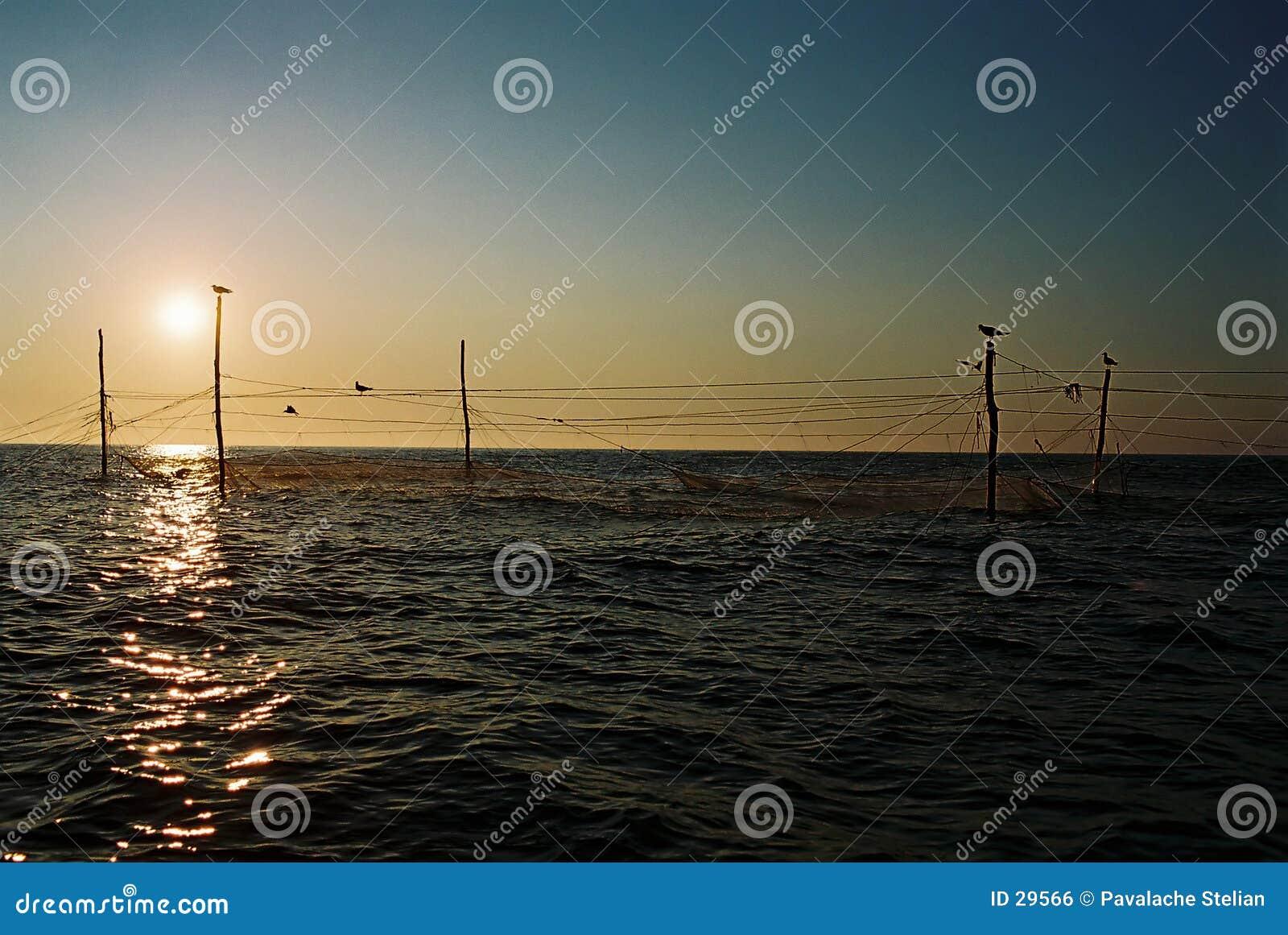 Mar Nero