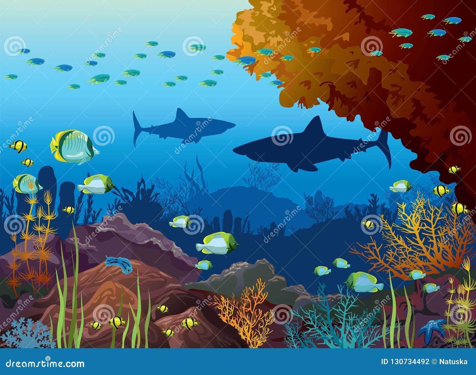 Mar subacuático - tiburones, arrecife de coral, pescado