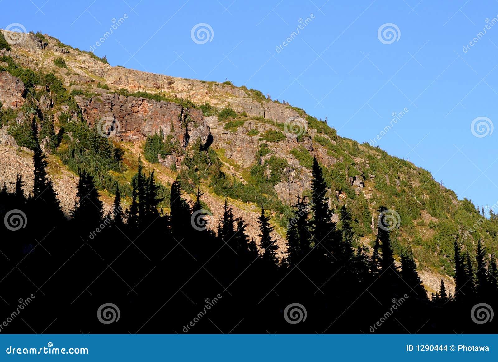 Maravillosamente acantilados y bosque del Lit