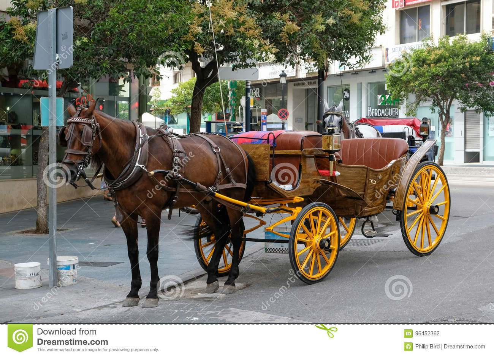 MARBELLA, ANDALUCIA/SPAIN - LIPIEC 6: Koń i fracht w Marbe