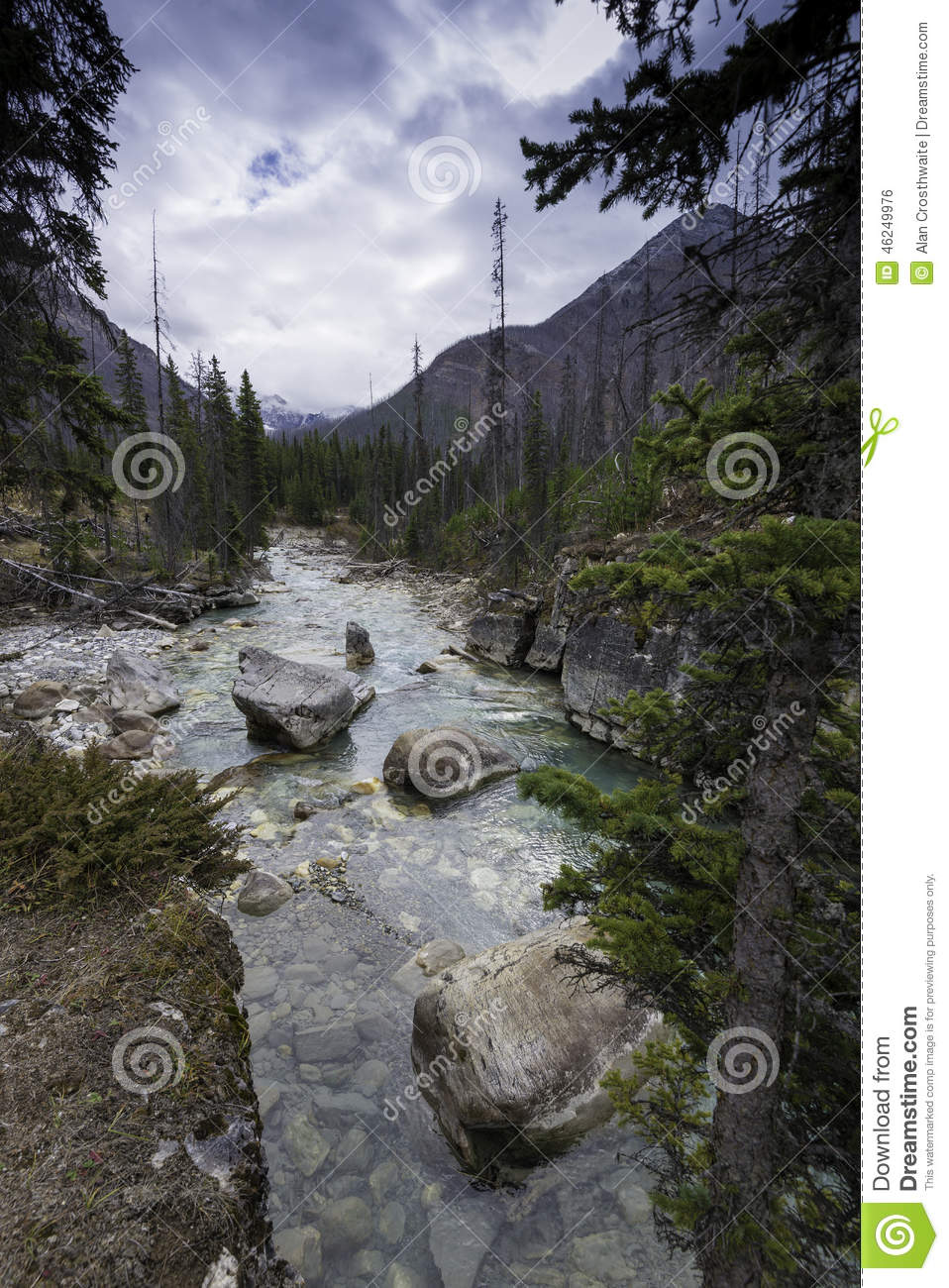 ... the river and rocks in Marble Canyon, Kootenay National Park, Canada