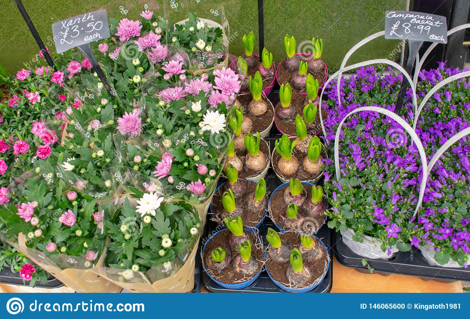 Marché de fleur avec les fleurs de rose, blanches et pourpres