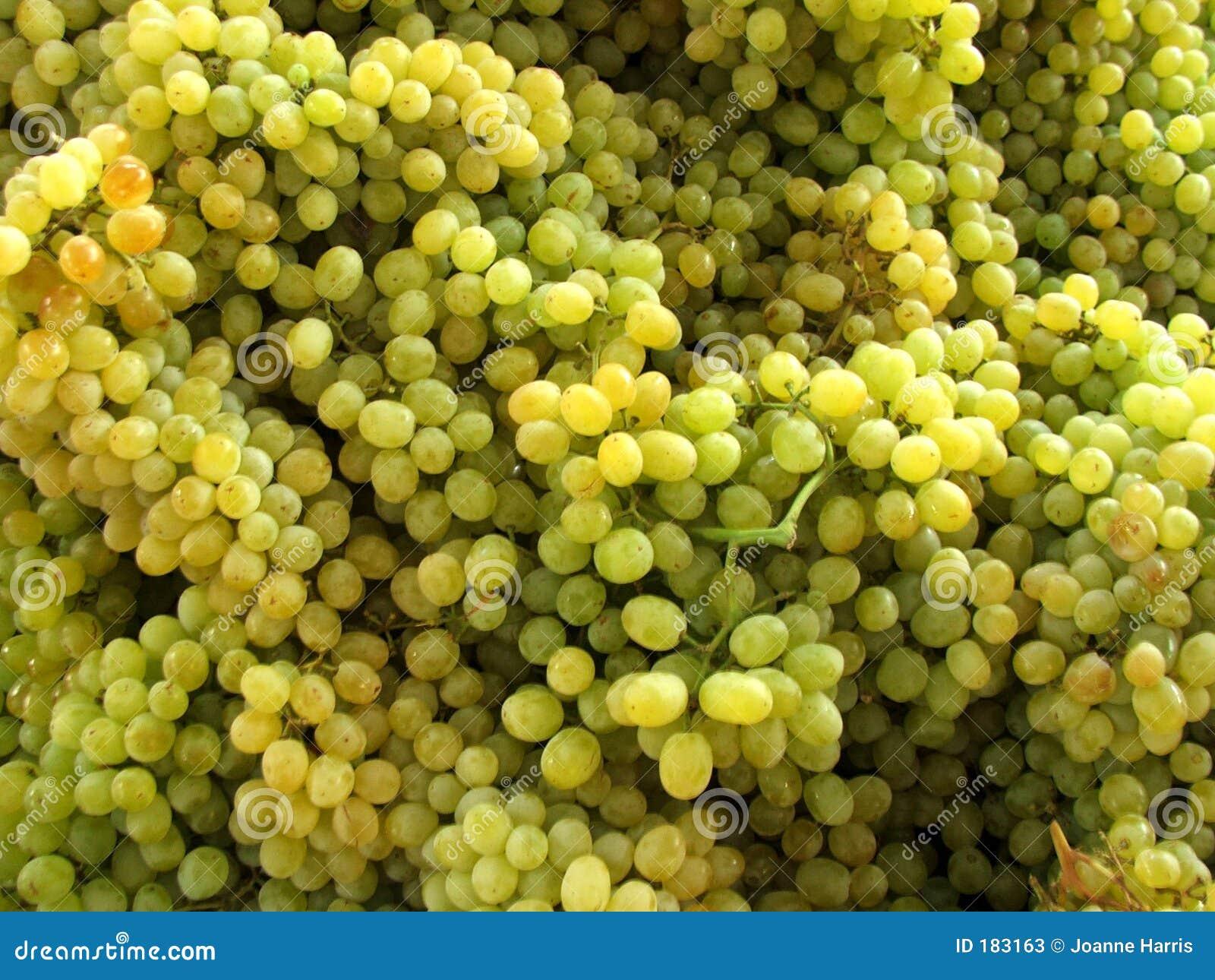 Marché - raisins