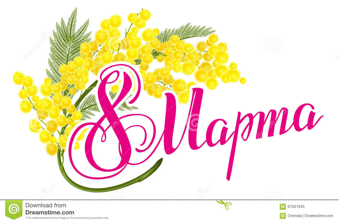 March 8 russian lettering text march 8 international womens day march 8 russian lettering text march 8 international womens day yellow mimosa flower mimosa flower symbol of womens day biocorpaavc Choice Image