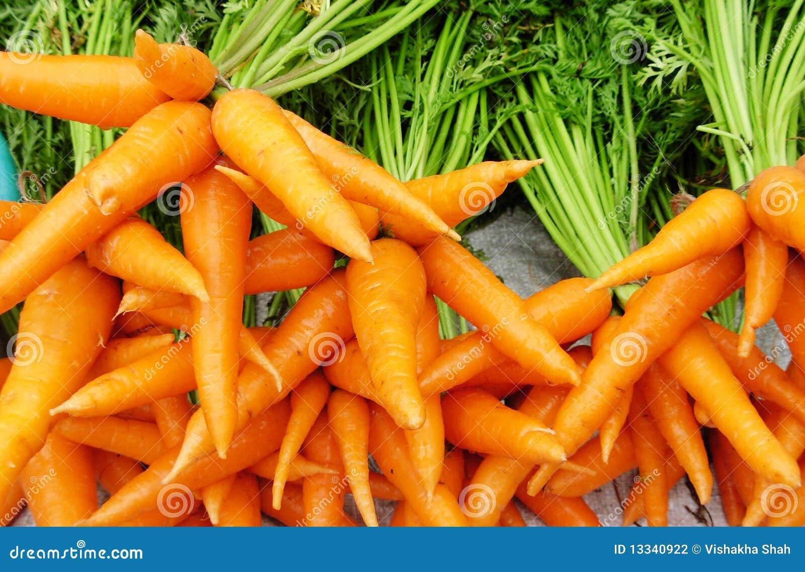 Marchewki pomarańczowe