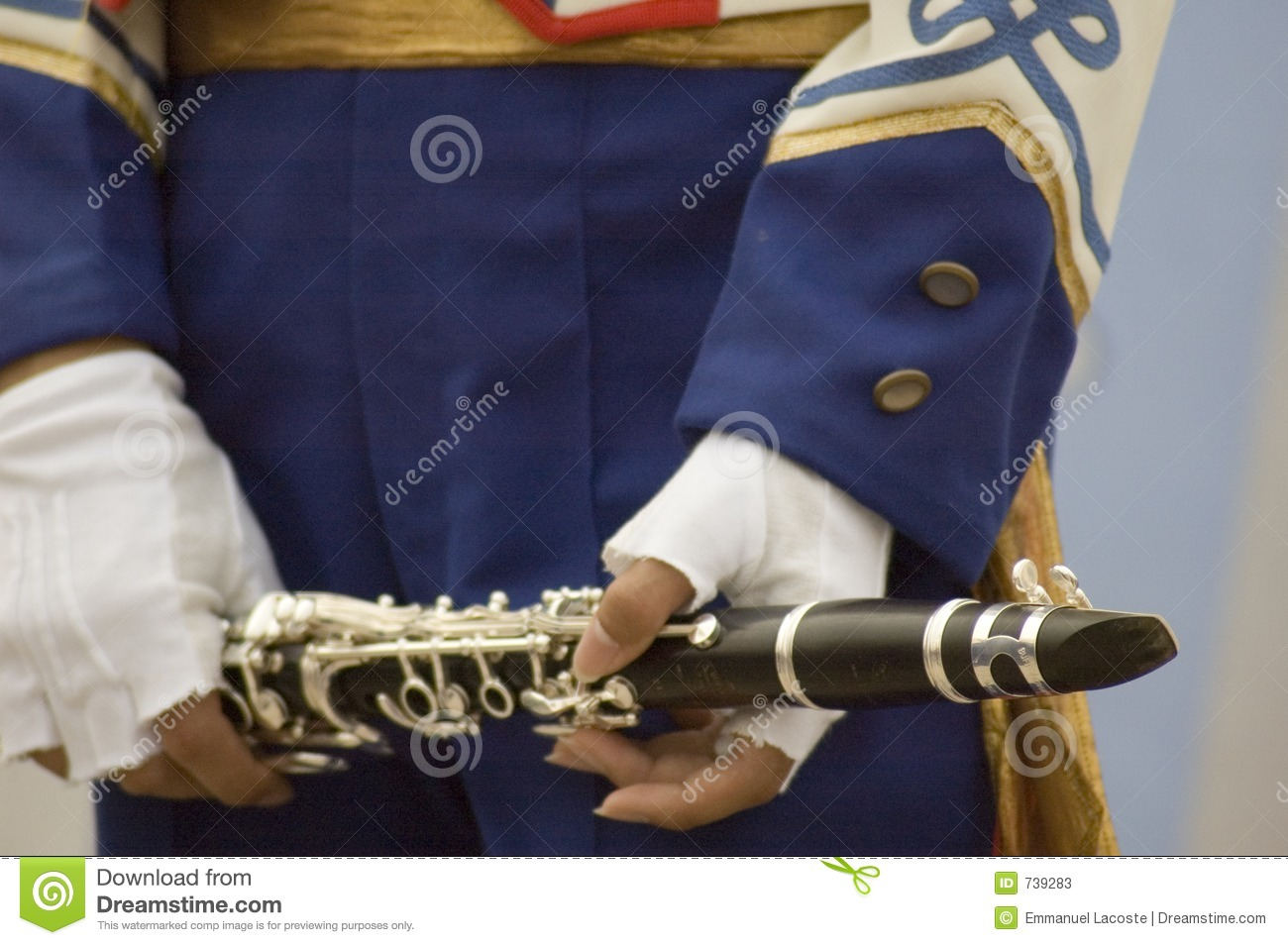 Marching Band Flute Marching Band Flute