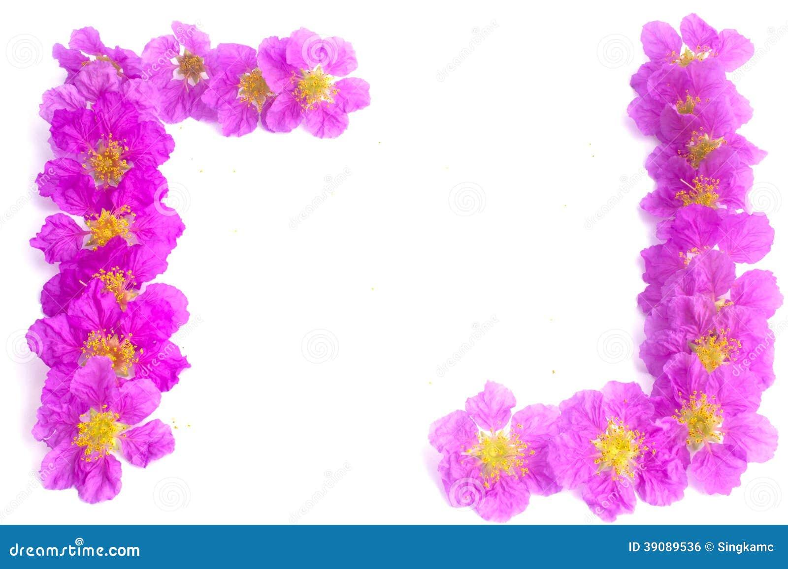 Marco Bonito De Las Flores Púrpuras Stock Photos - 4 Images
