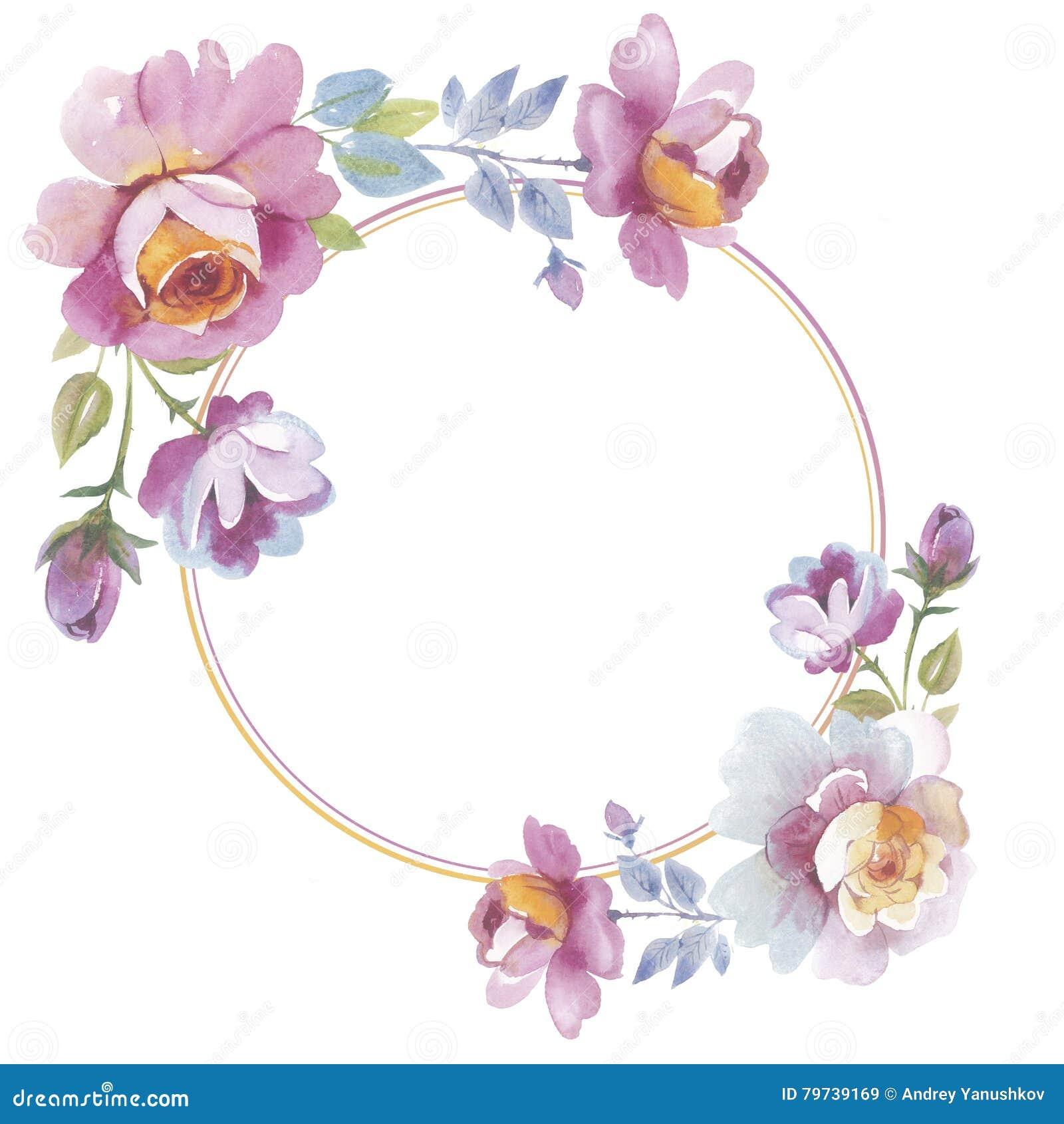 Marco color de rosa de la flor del Wildflower en un estilo de la acuarela aislado