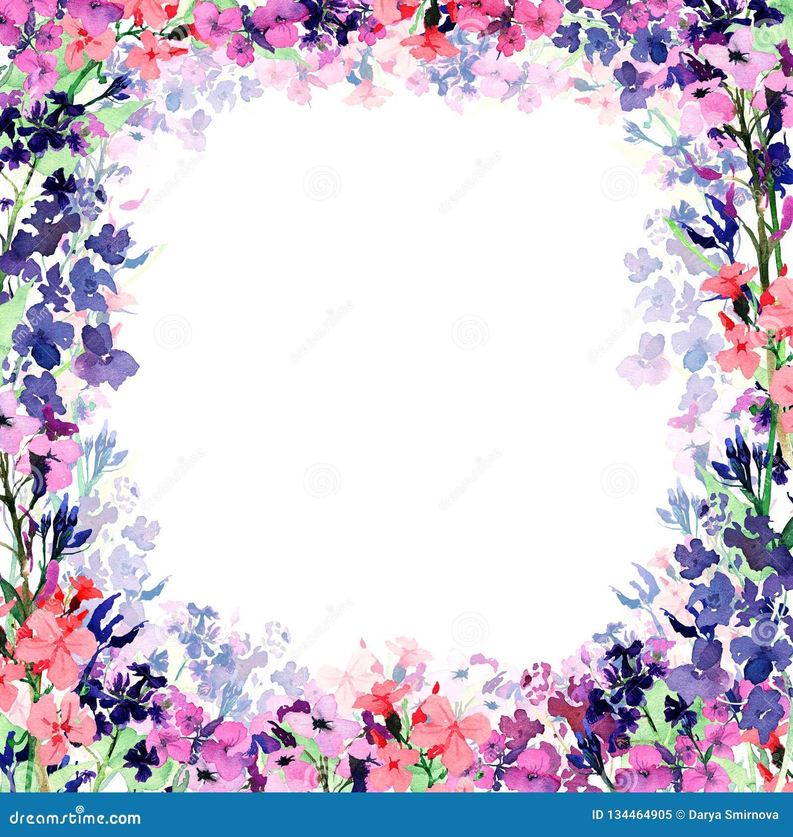 Marco cuadrado de la acuarela exhausta de la mano con pequeño rosa del prado, flores azules y violetas y capa translúcida de la f