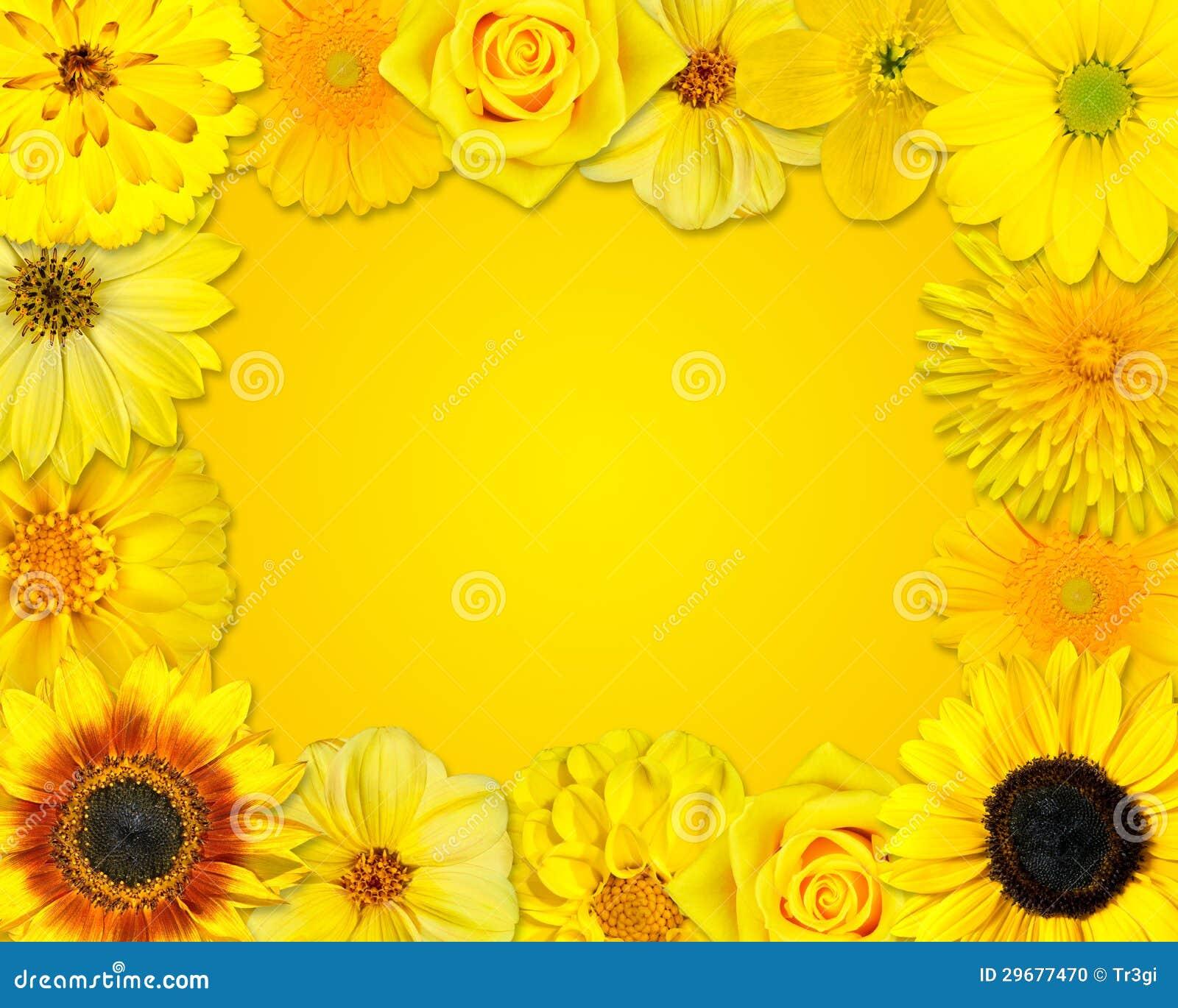 Marco De La Flor Con Las Flores Amarillas En Fondo