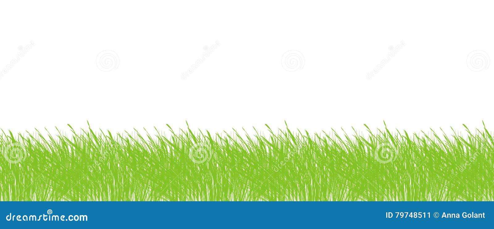 Marco de la frontera de la hierba inconsútil