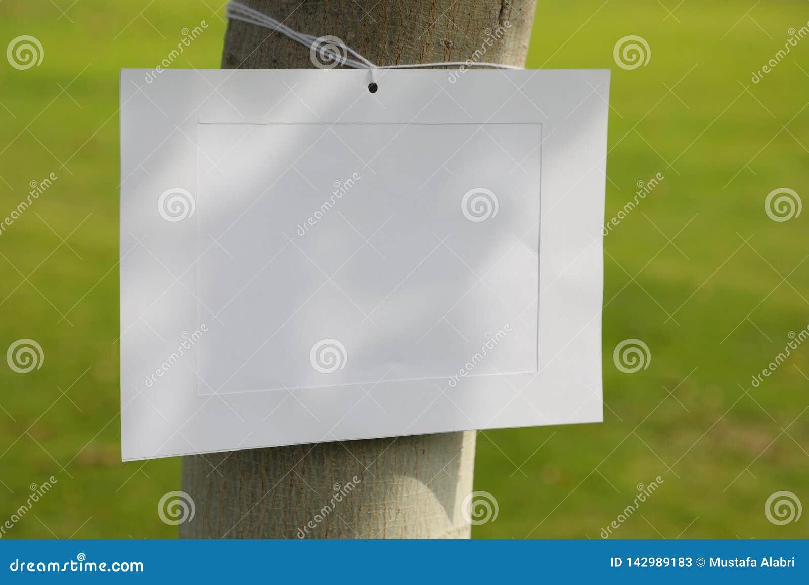 Marco de la imagen en un tronco de árbol