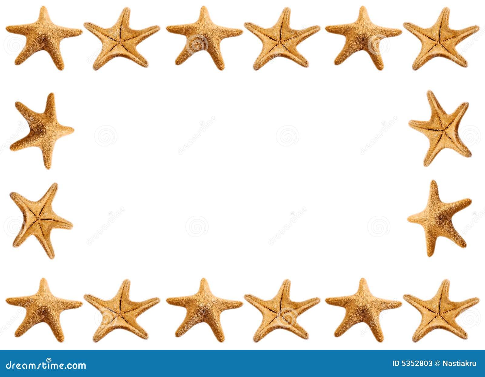 Marco De Las Estrellas De Mar Imagen de archivo - Imagen de marco ...