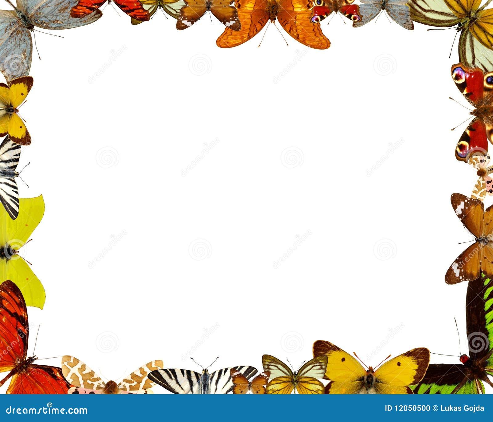 Marco de las mariposas foto de archivo imagen 12050500 - Marco de fotos multiple ...