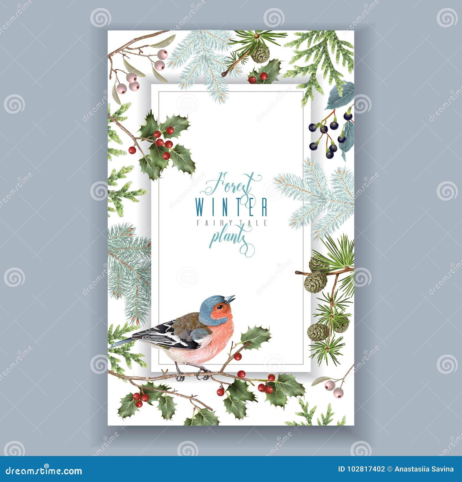 Marco del invierno del pájaro