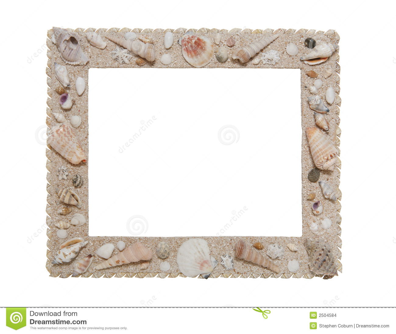 Marco del Seashell foto de archivo. Imagen de foto, biología - 2504584