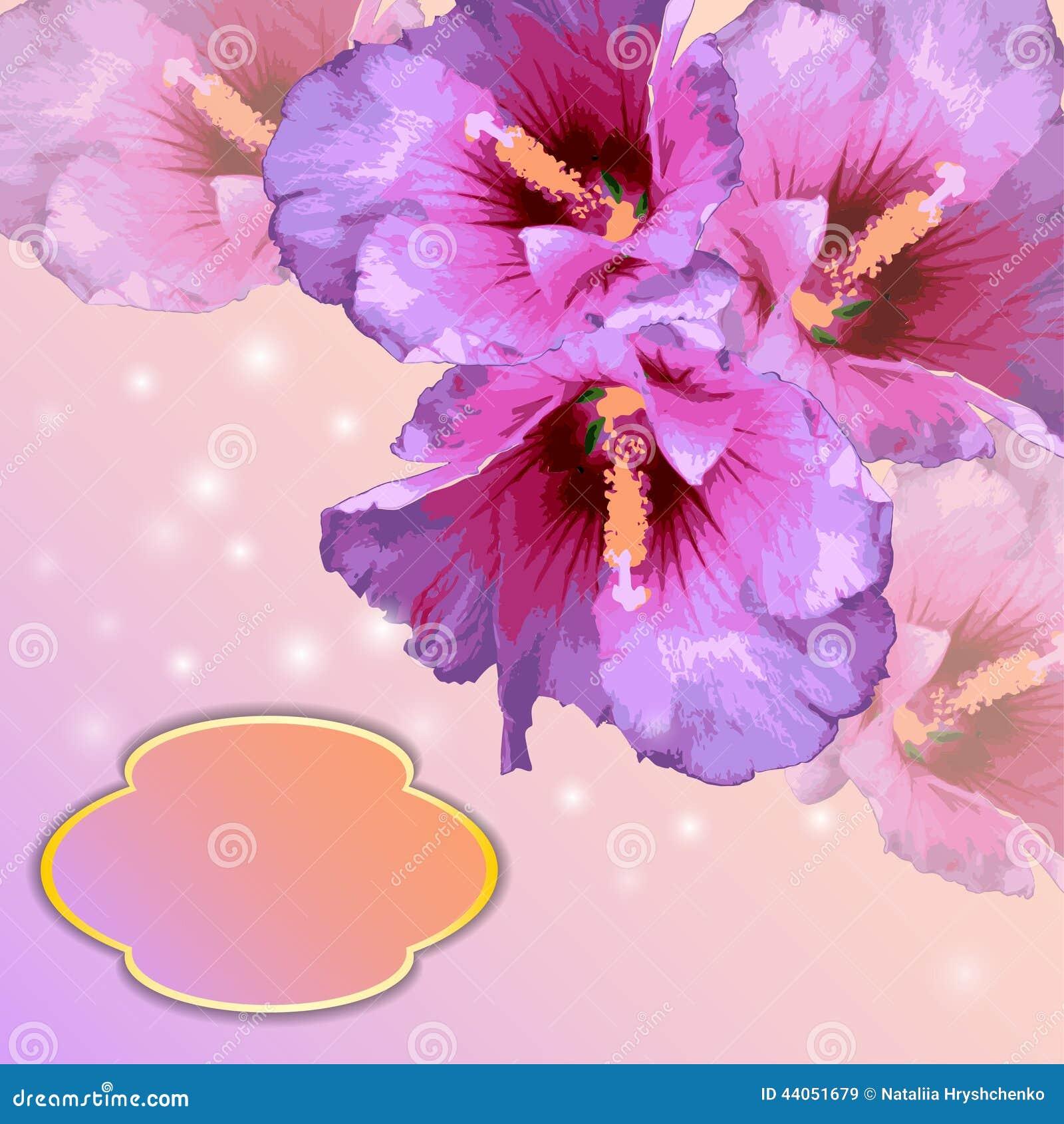Flores preciosas fotos de flores preciosas para regalar flores y animales comunidad google - Fotos flores preciosas ...