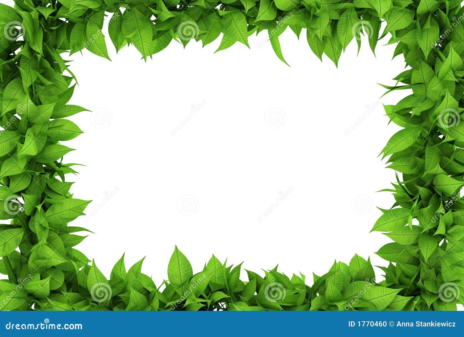 Marco floral foto de archivo imagen de gr fico dise o - Marcos para plantas ...