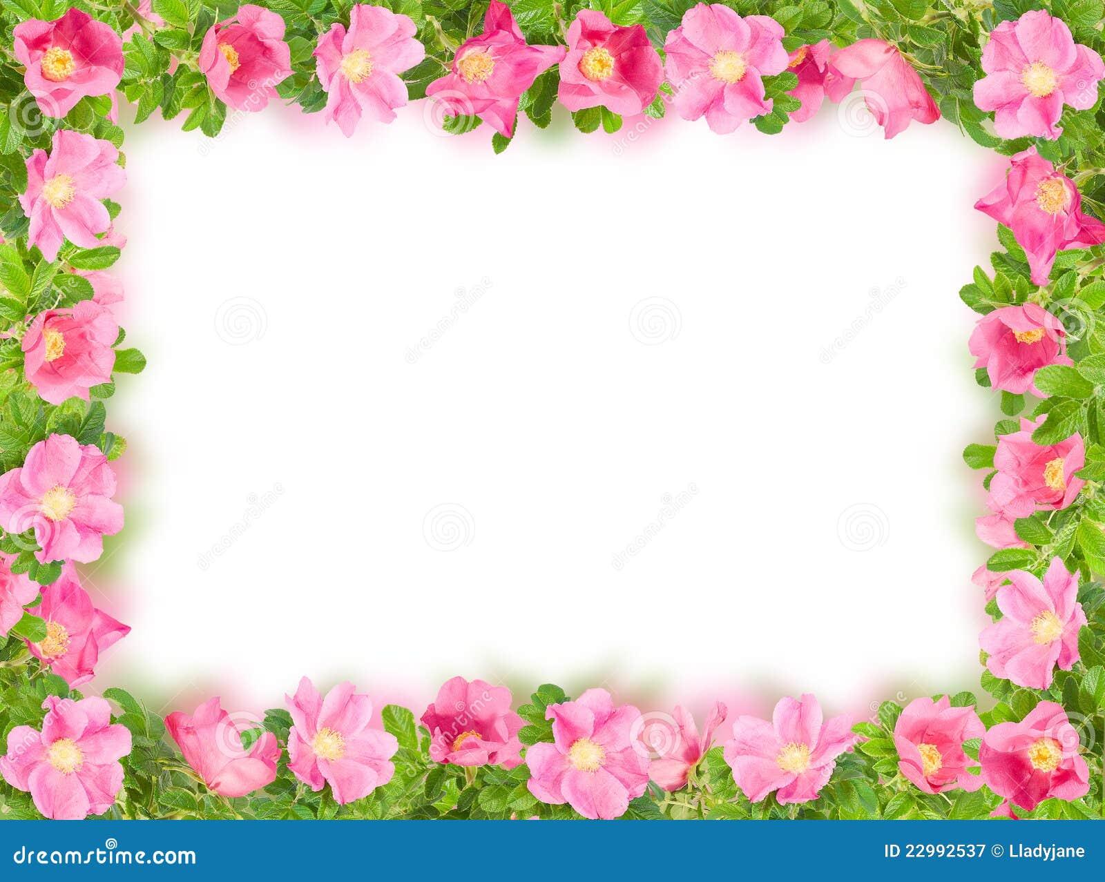 89c3de96ee35a imágenes comunes del Marco Floral Rectangular - los derechos de la  transferencia directa el 264 liberan las fotos