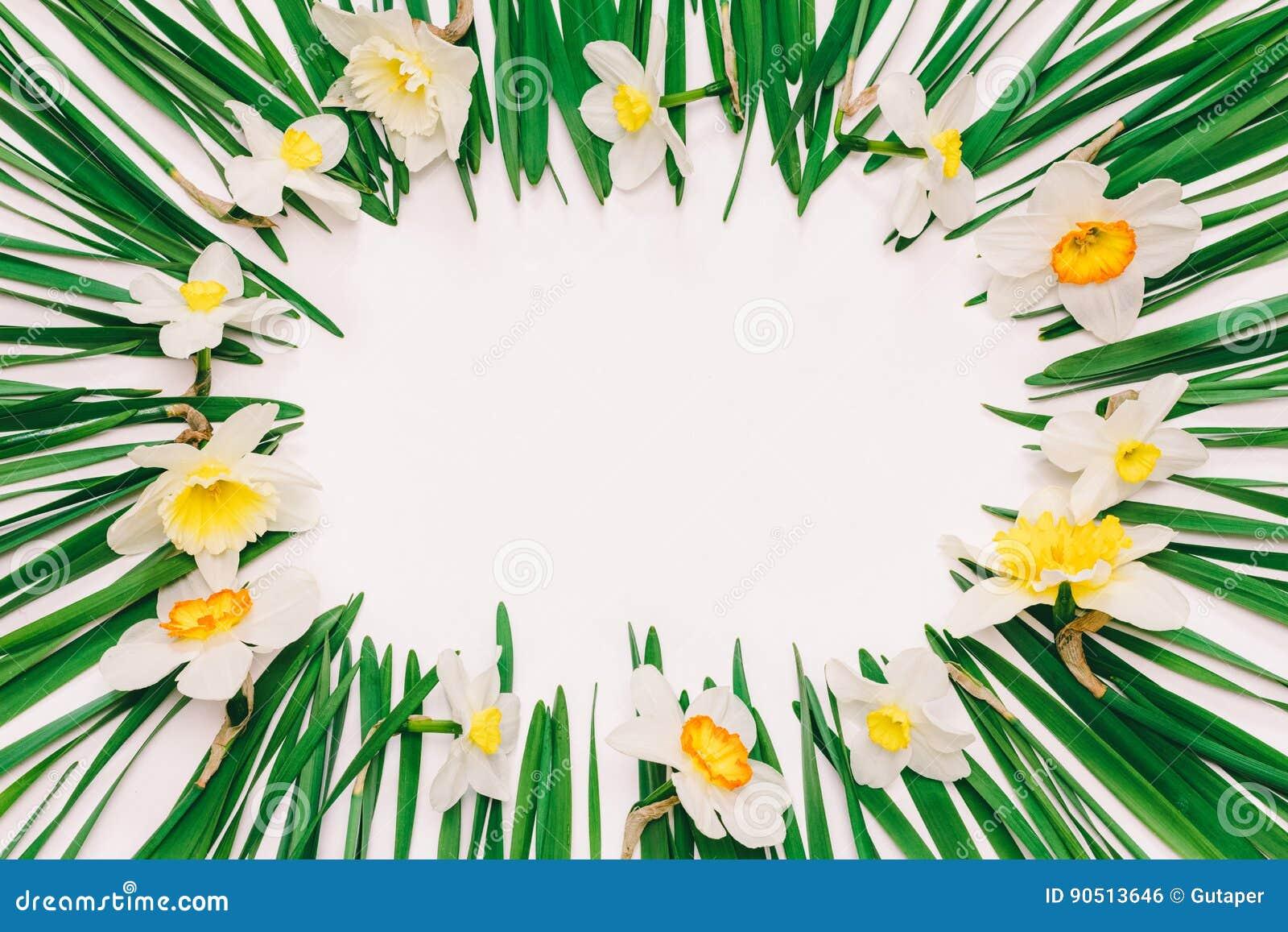 Marco Floral De La Primavera De Flores Y De Hojas Verdes