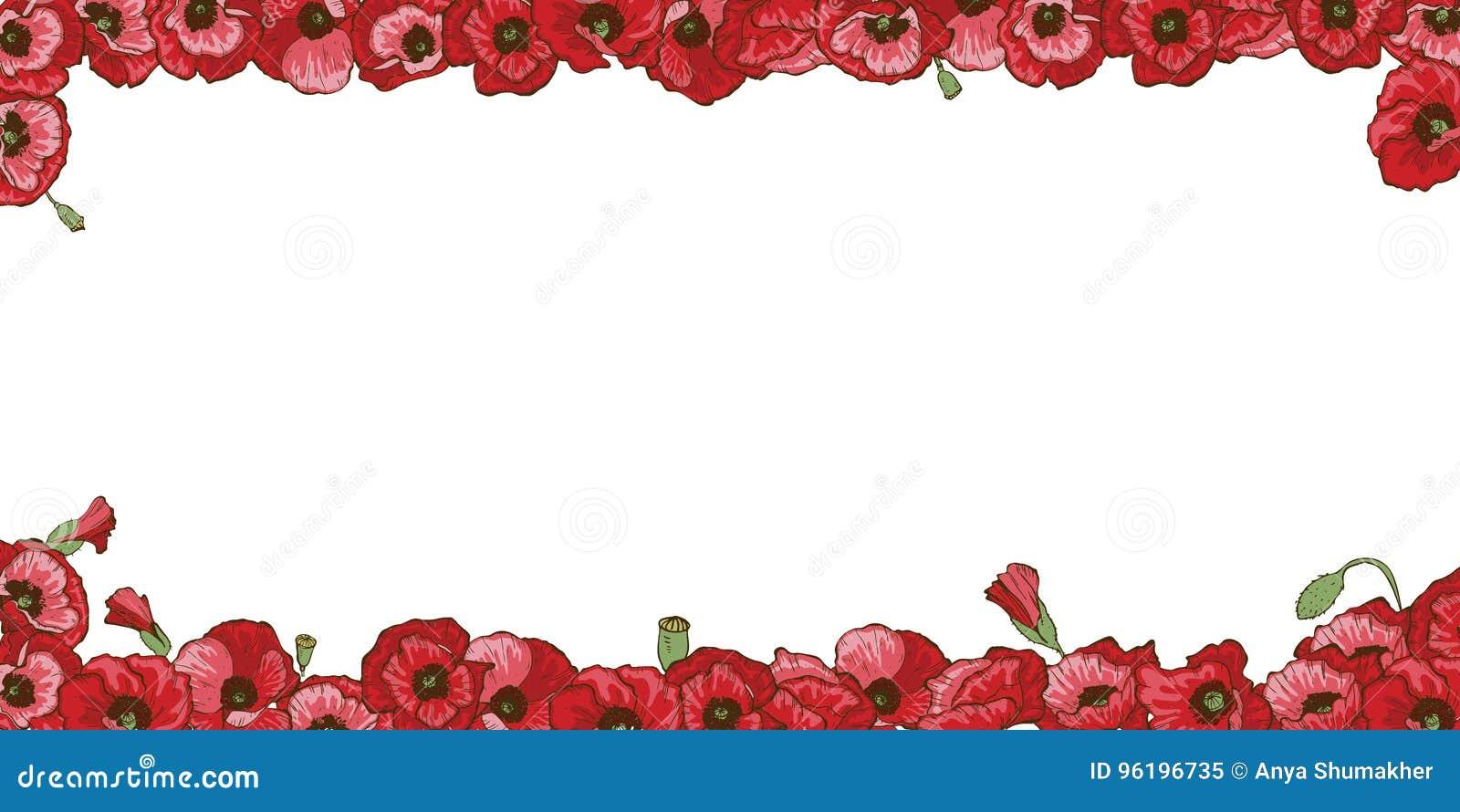 Marco Floral De Las Flores Rojas De La Amapola Aisladas En El Fondo ...
