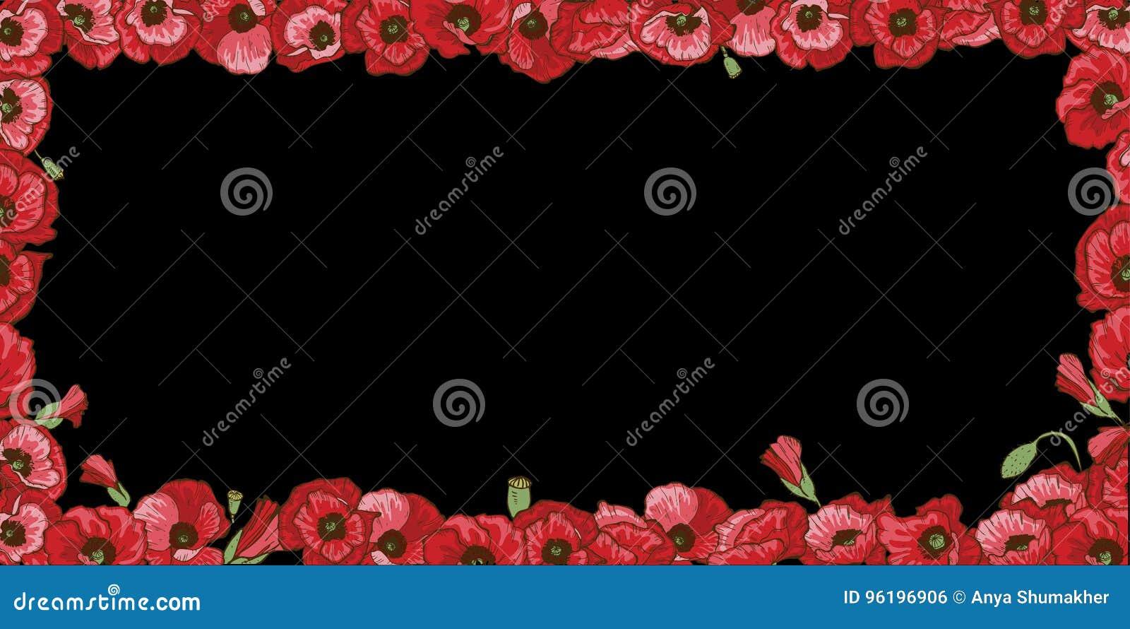 Marco Floral De Las Flores Rojas De La Amapola Aisladas En Fondo ...