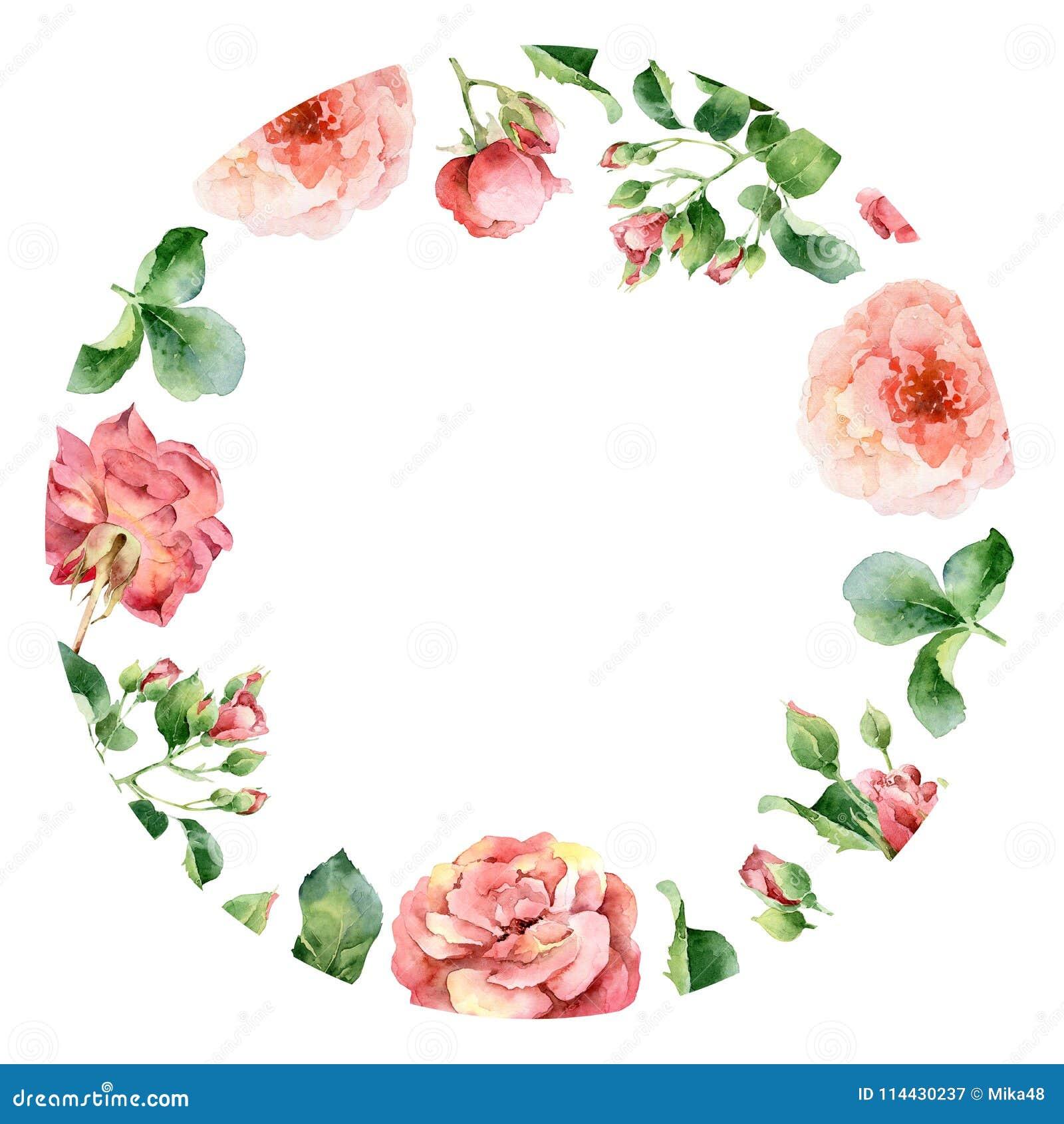 Marco Floral Redondo De La Acuarela De Rosas Stock de ilustración ...