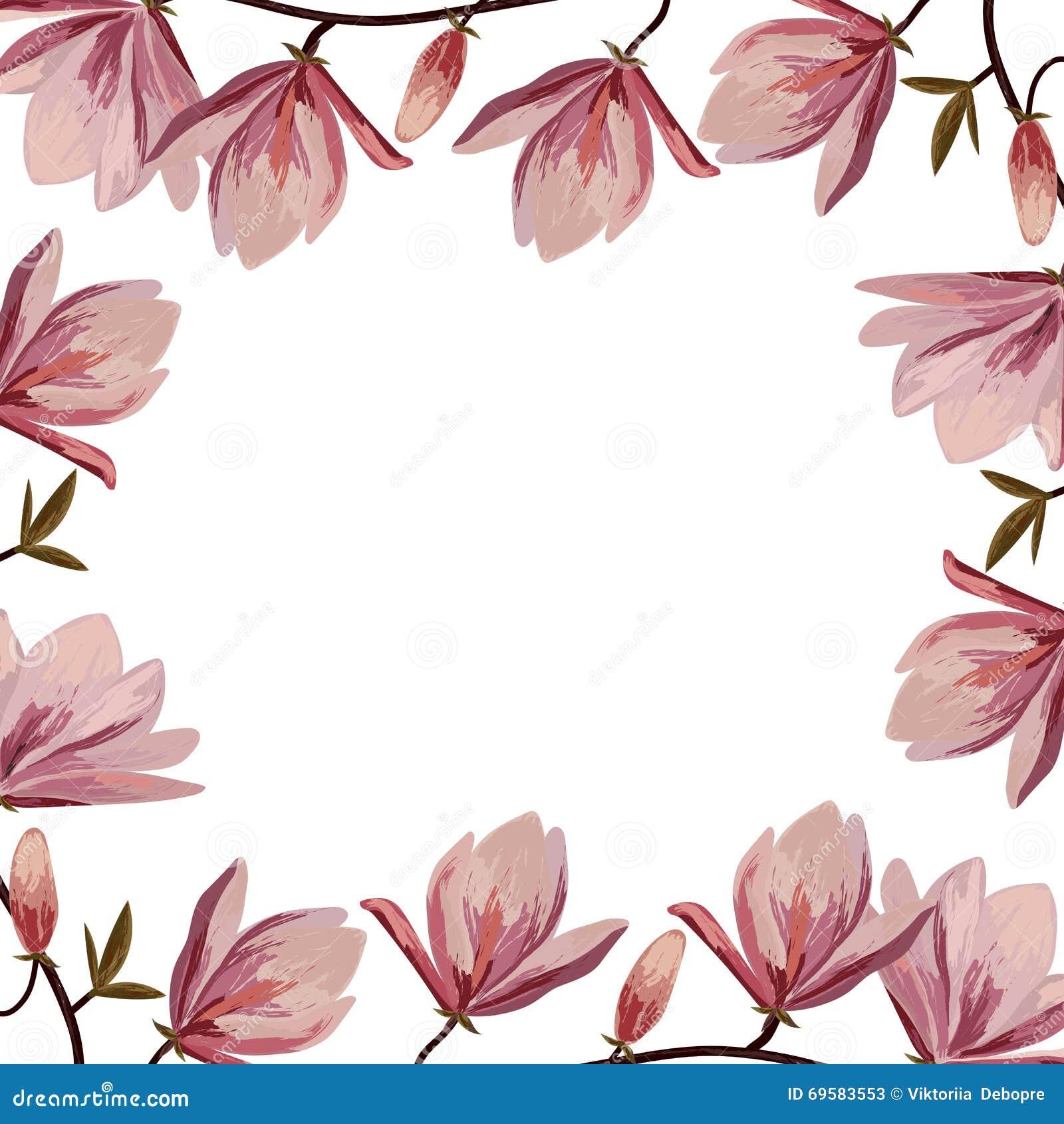 Marco hermoso con las flores rosadas de la magnolia