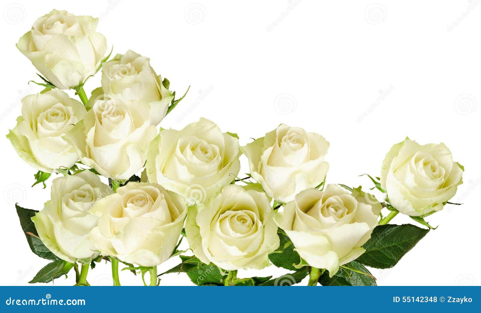 marco horizontal hermoso con el ramo de rosas blancas