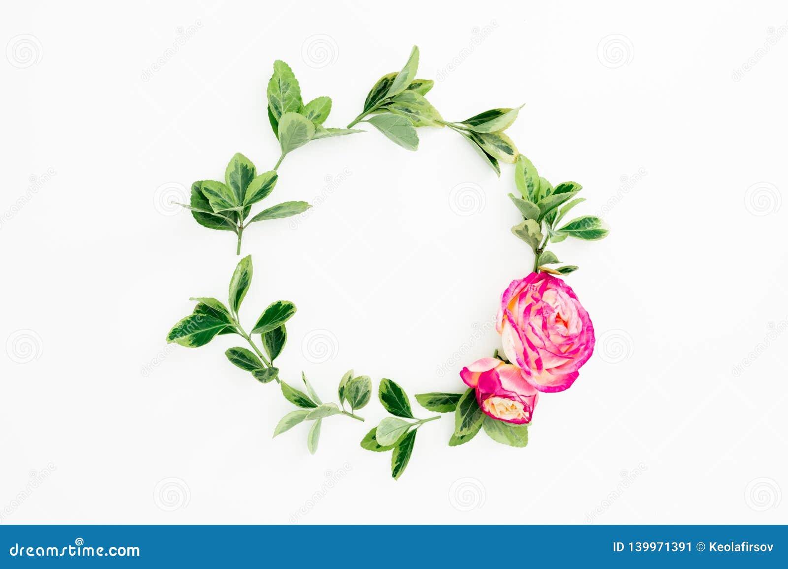 Marco redondo floral con las flores y las hojas rosadas de las rosas en el fondo blanco Endecha plana, visión superior