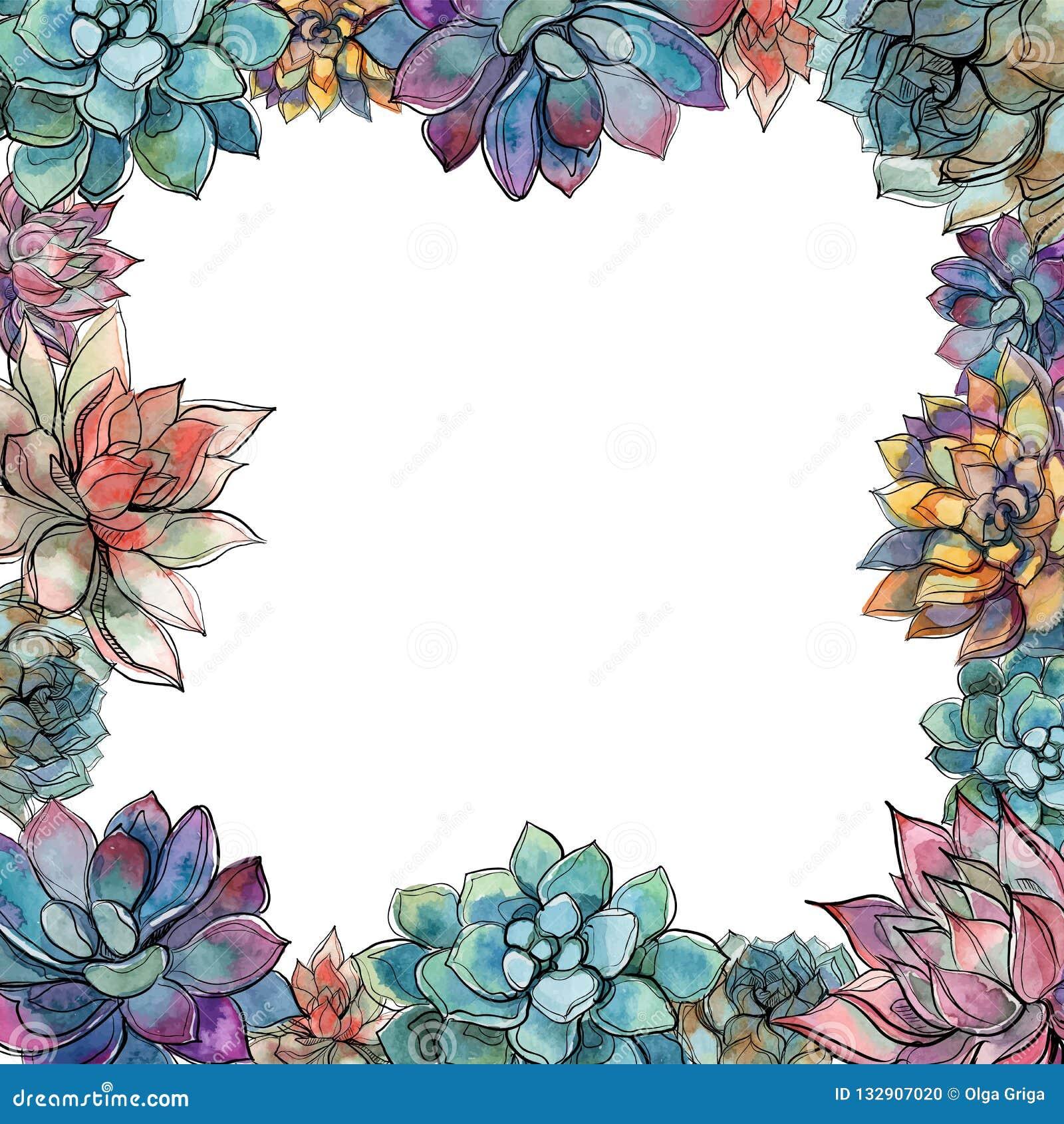 Marco suculento Composición de flores Postal para su texto Vector