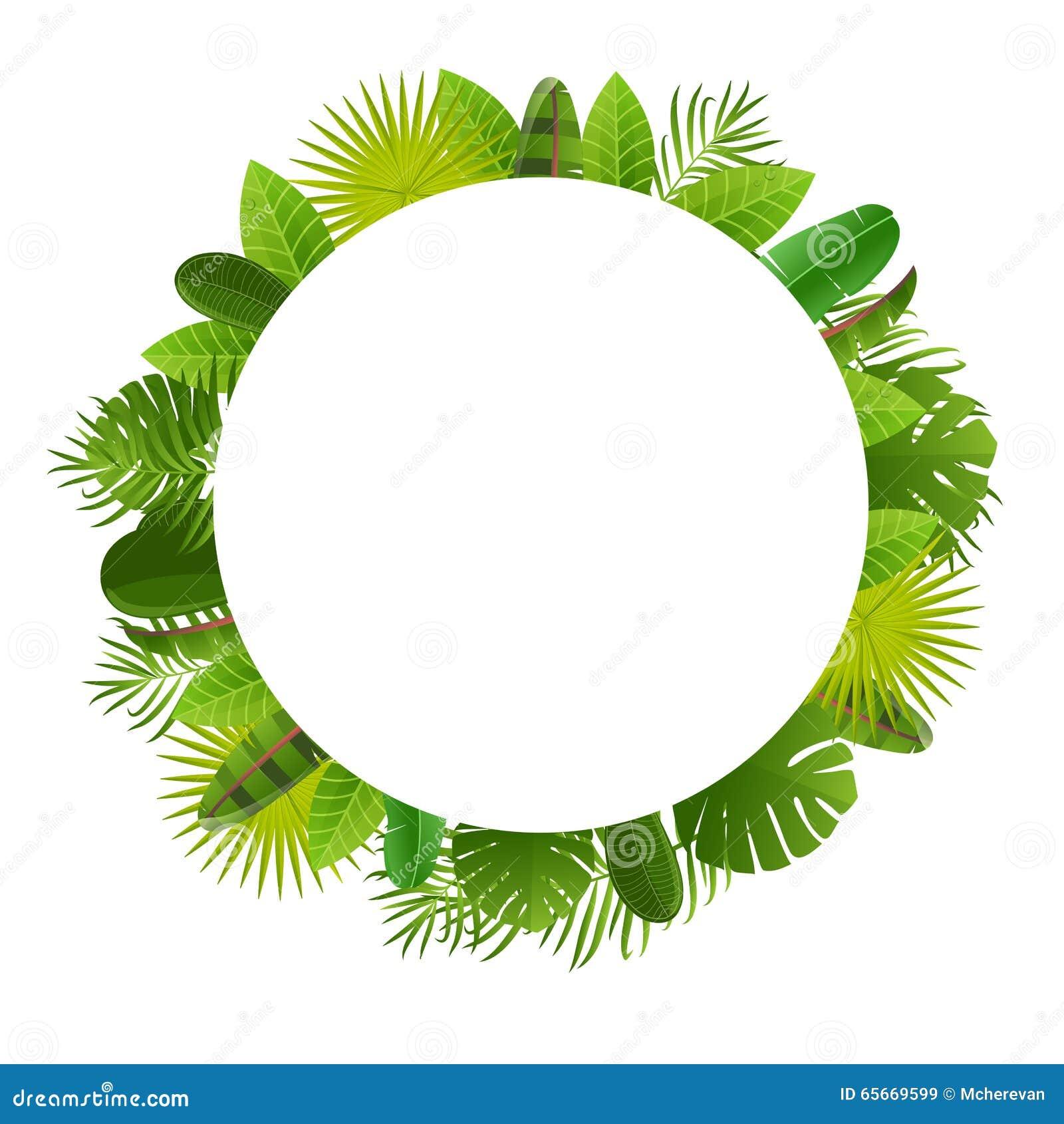 Marco Tropical De Las Hojas Fondo Floral Del Diseño De La Selva La ...