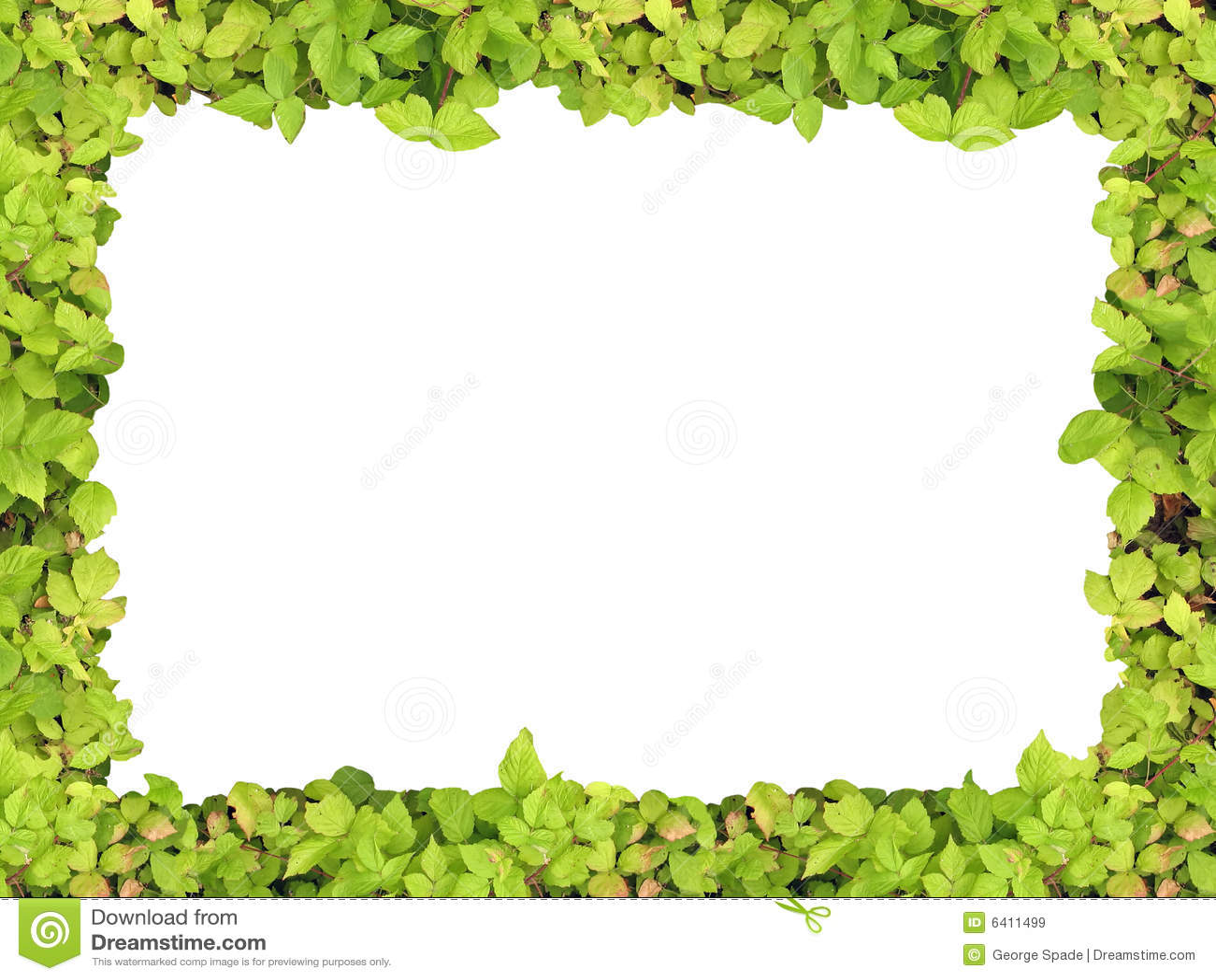 Marco verde stock de ilustración. Ilustración de contexto - 6411499
