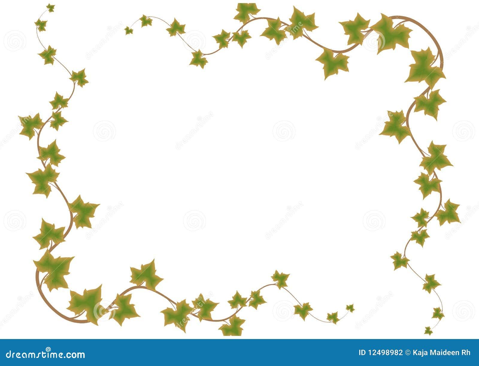 Marco verde de las hojas vector ilustraci n del vector - Marcos para plantas ...