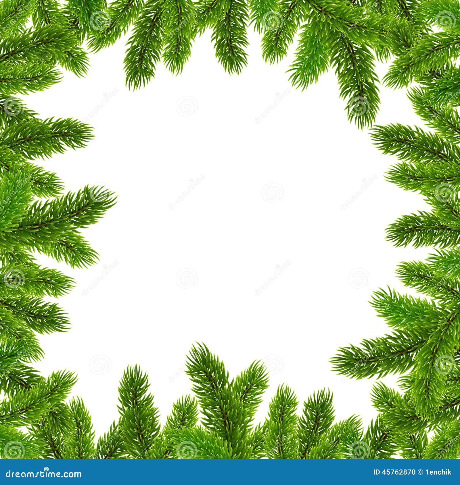 Marco verde del vector de las ramas de rbol de navidad - Marcos para plantas ...
