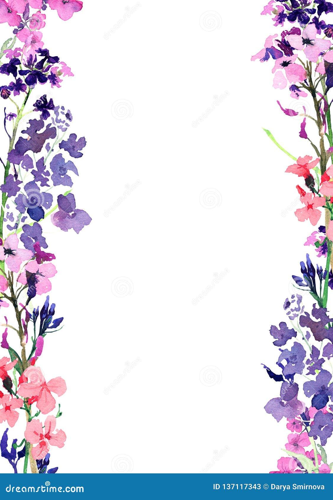 Marco vertical de la acuarela exhausta de la mano con flores y las hierbas azules del prado las pequeñas y rosadas en el fondo bl