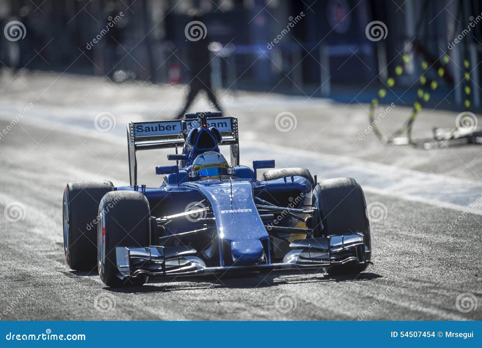 Marcus Ericsson Jeres 2015