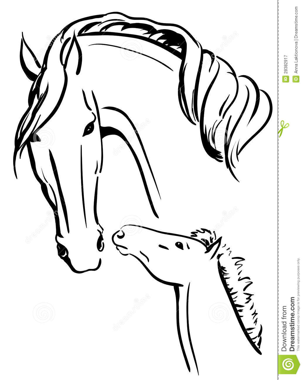 Paarden Logo Kleurplaat Mare And Foal Black And White Royalty Free Stock