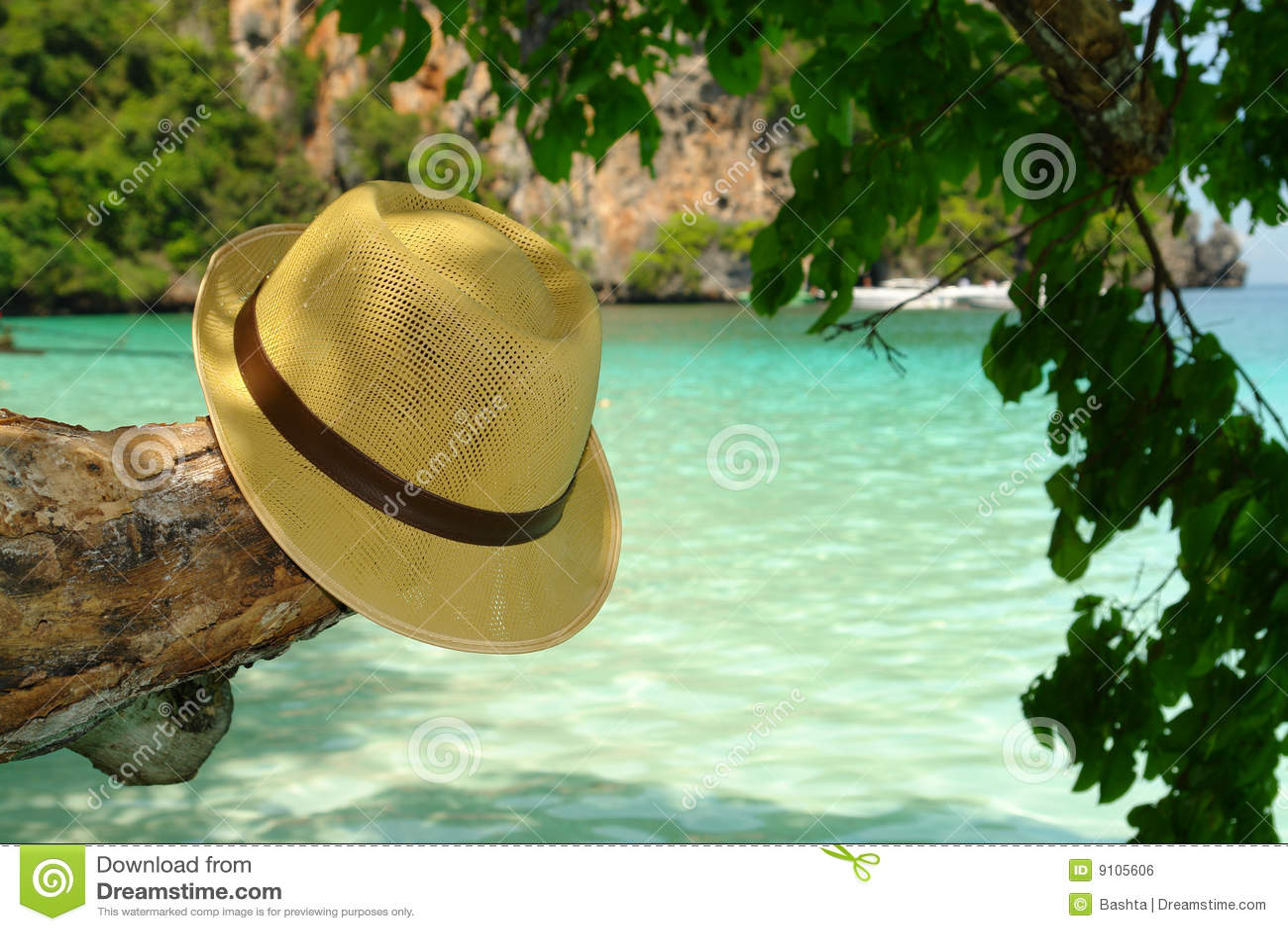 Cappello di estate in un albero e mare blu 22ed530628ce