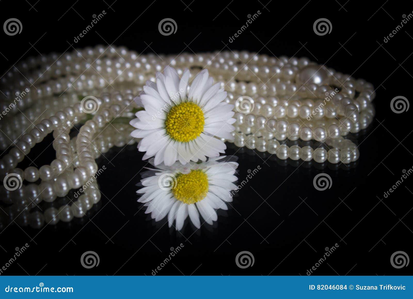 Margarida branca e pérolas