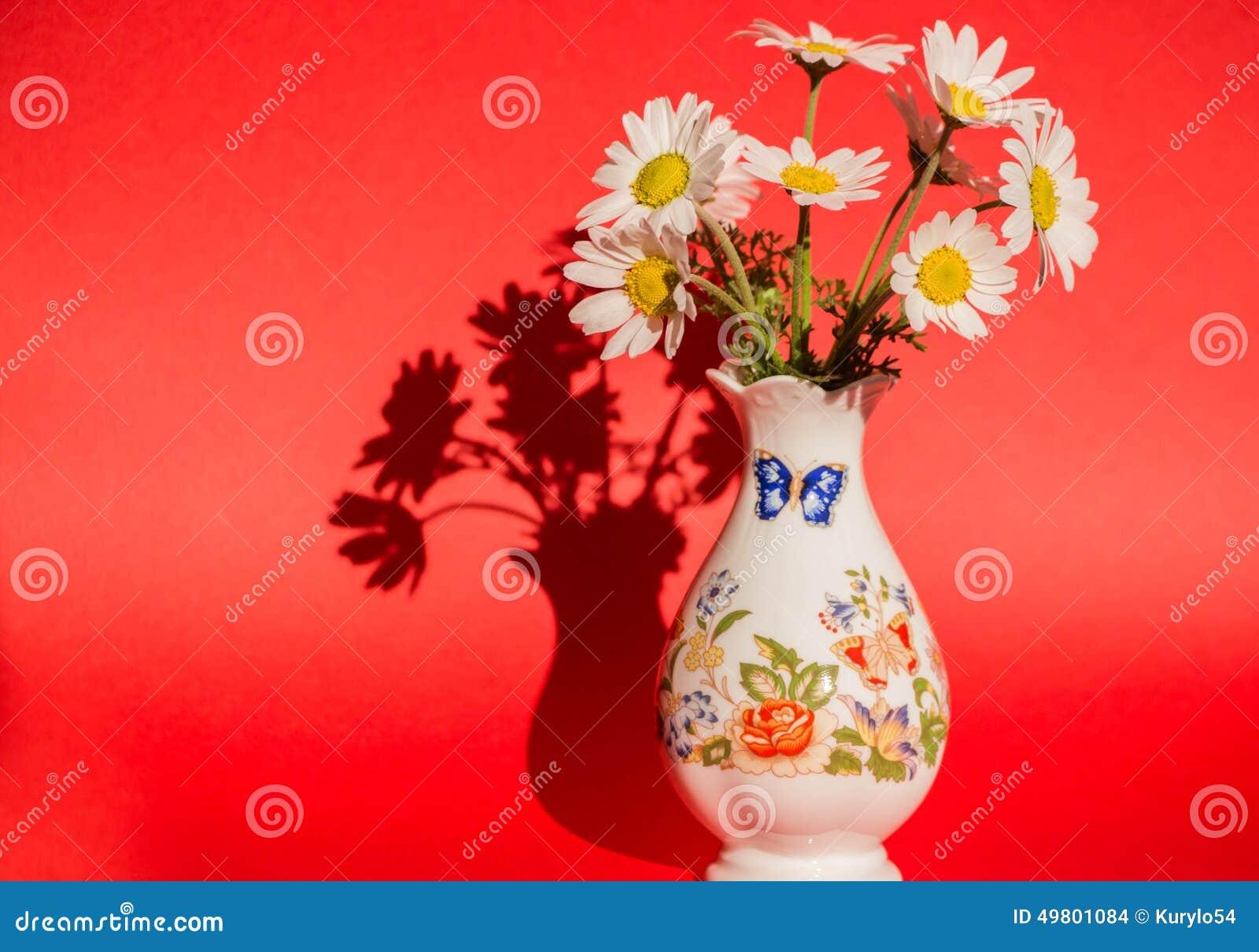 Margaridas em um vaso em um fundo vermelho