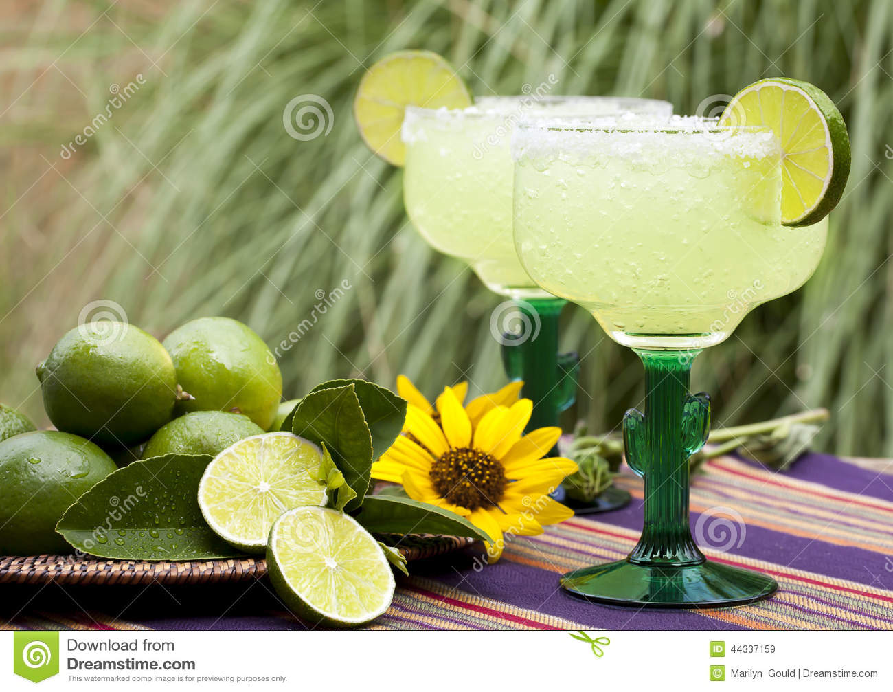 Margarita Cocktails Outdoors 2