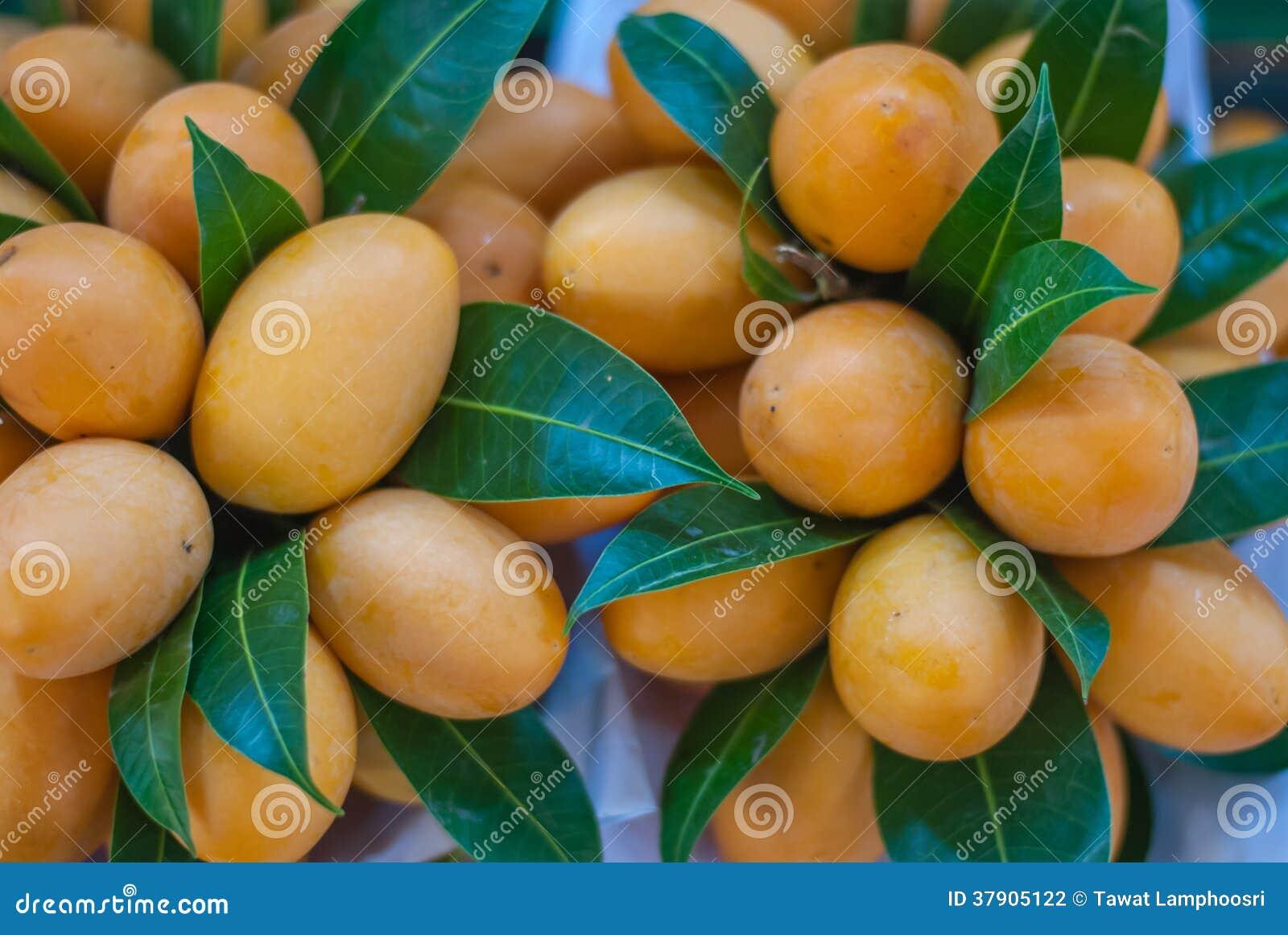 Marian Plum Or Plum Mango Stock Photo Image Of Dessert 37905122