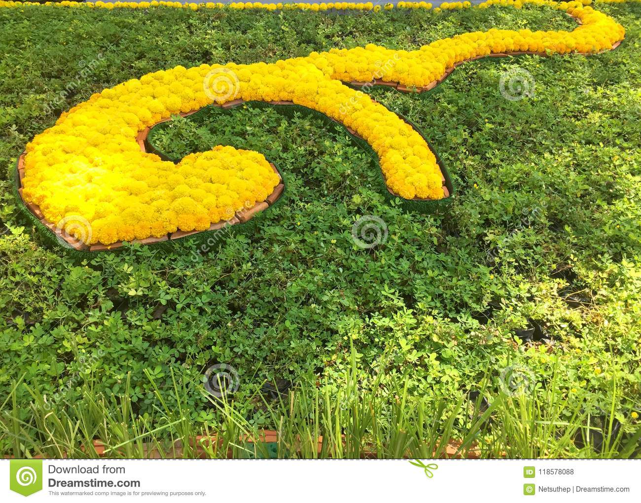 Marigold flowers decorated as Thai number nine alphabet