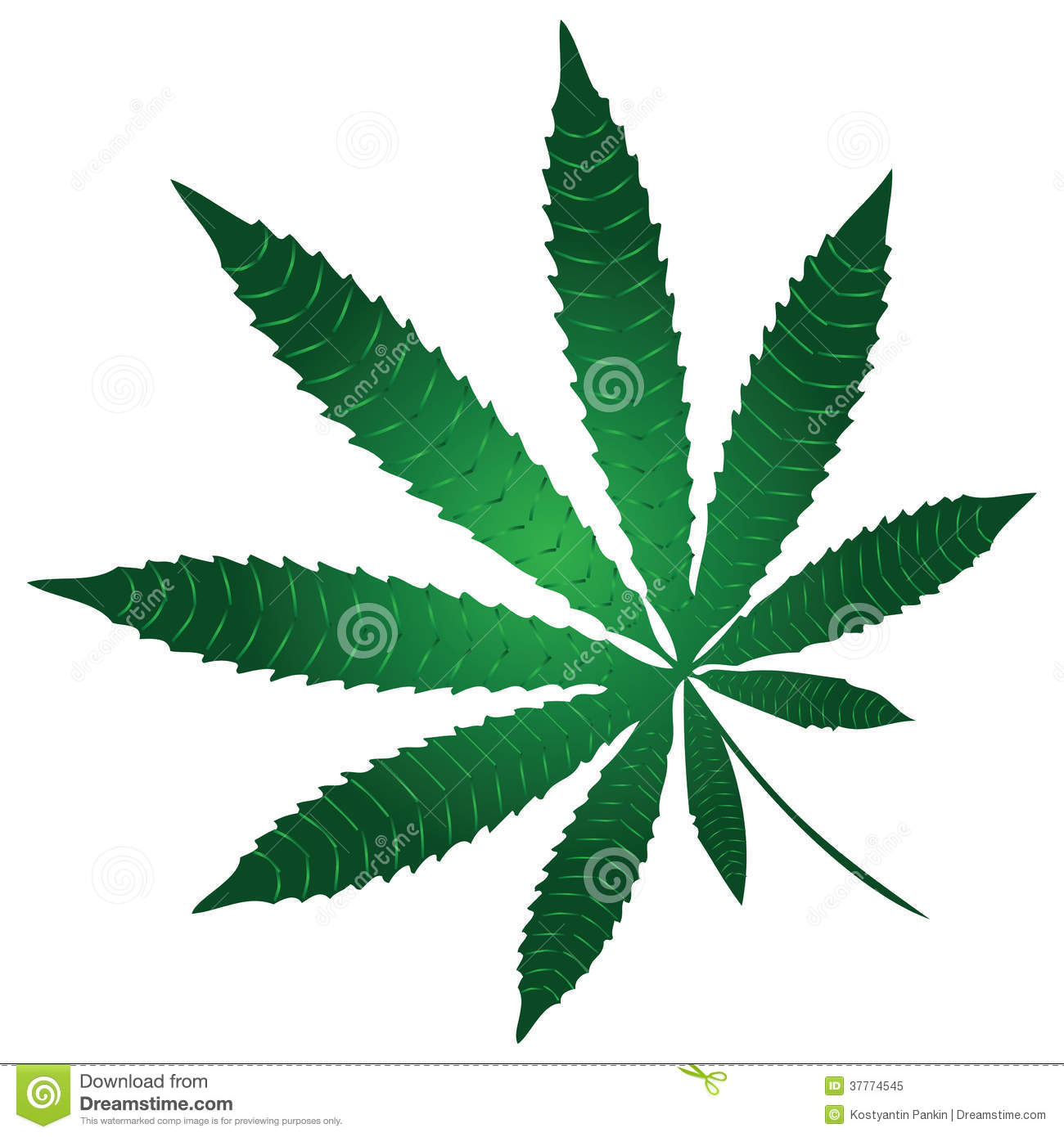 Cannabis leaf a component of a narcotic substance marijuana vector