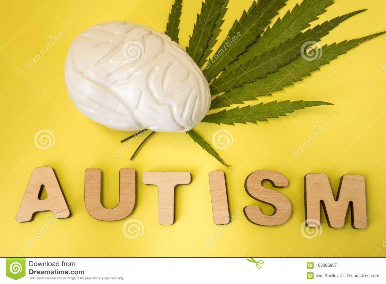 Marijuana or cannabis and treatment of autism concept photo. Figure of human brain lies on green leaves of cannabis plant near thr