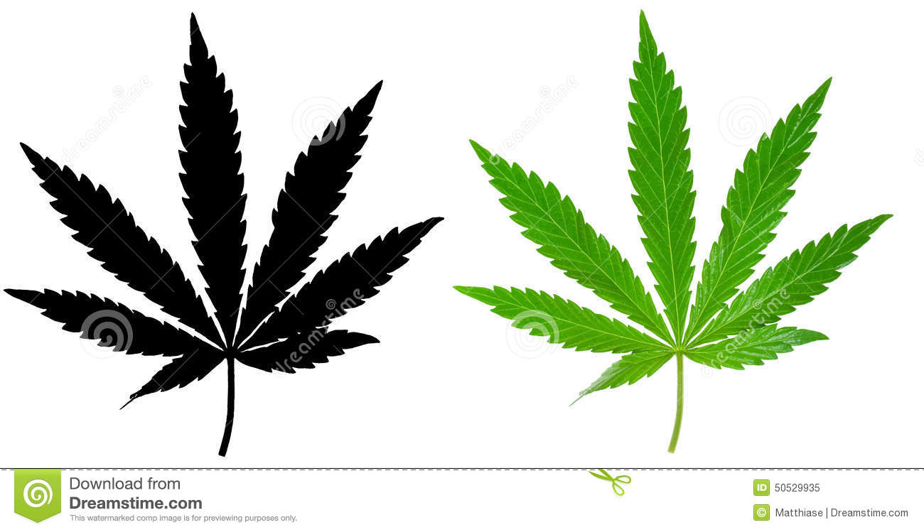 Marijuana Stock Illustrations – 3,754 Marijuana Stock ...