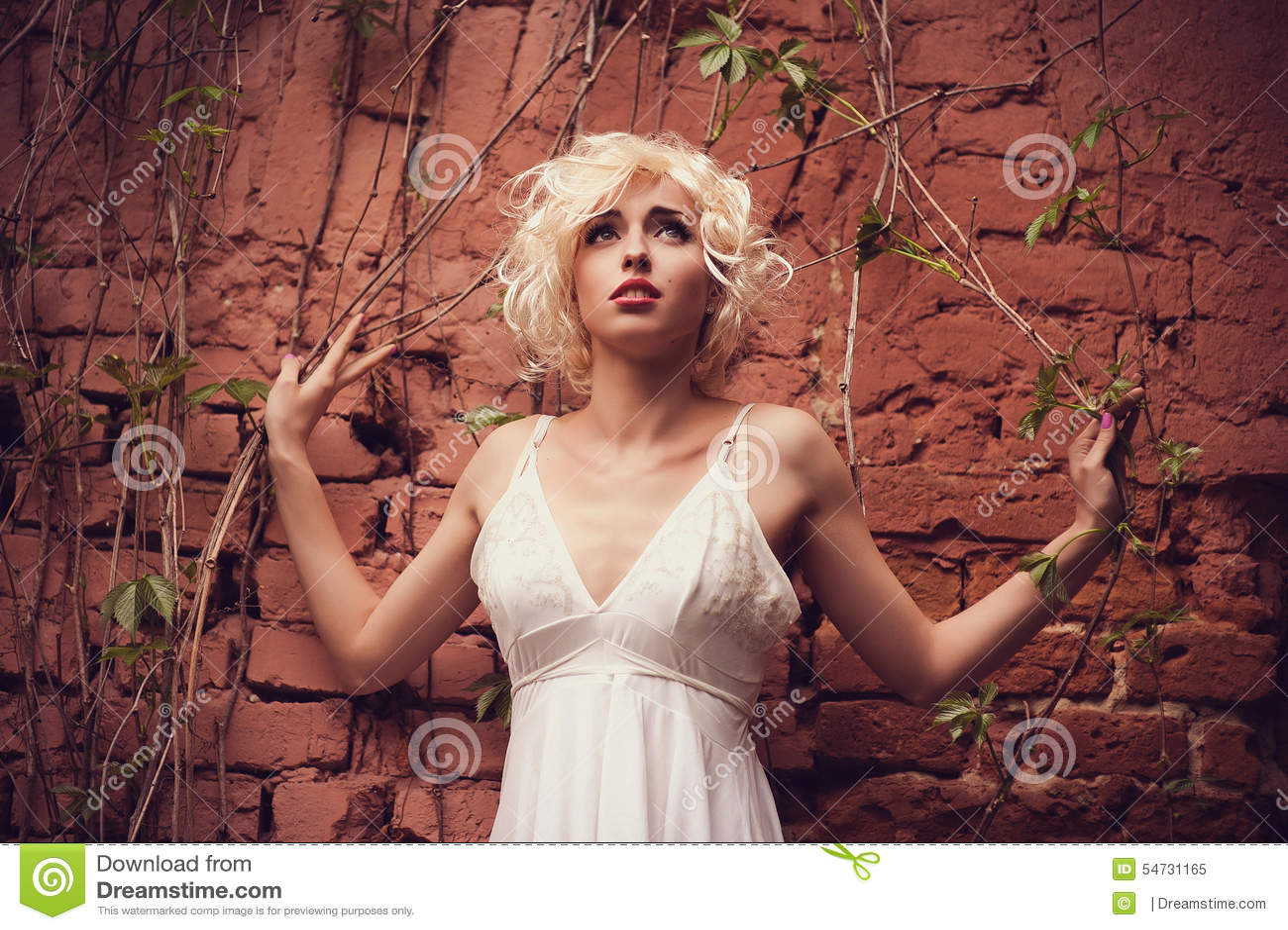 Marilyn Monroe novo