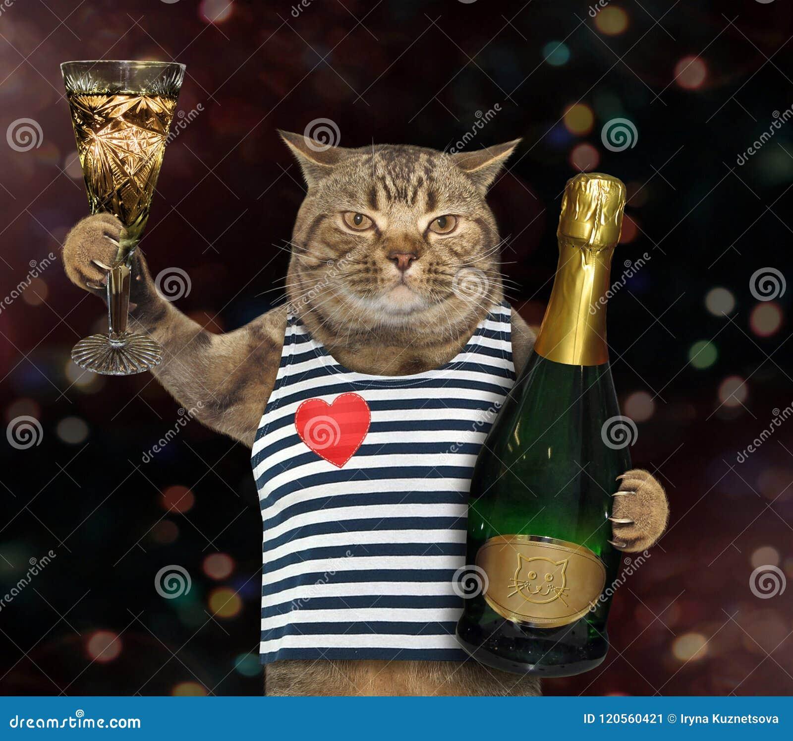 Marin De Chat Avec Le Verre De Vin 2 Image stock Image du